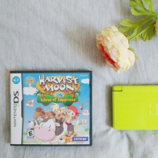 My first DS, and my first game.